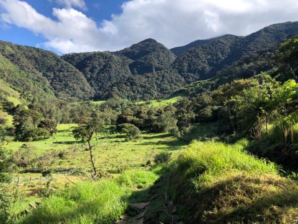 abrazo del bosque garantia agroecologica red de guardianes de semillas ecuador