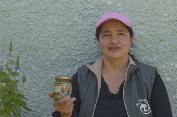 garantia agroecologica red de guardianes de semillas